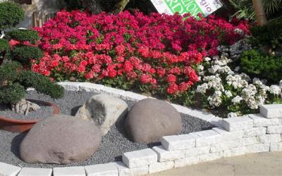 Realizzazione giardini Zen